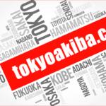 """<span class=""""title"""">tokyoakiba.com</span>"""